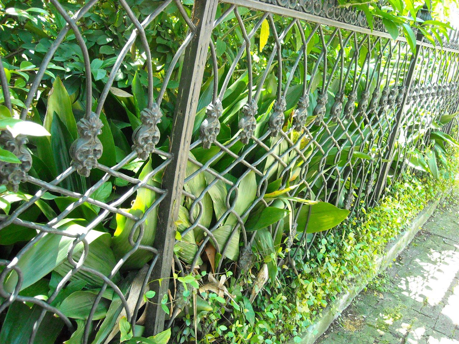 Skull Rose Fence